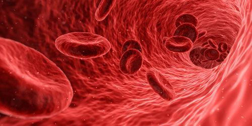 tinkama kraujotaka